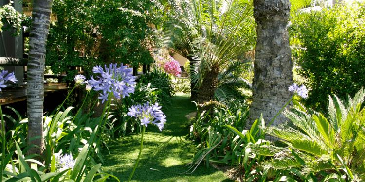 jardin en pelouse synthétique