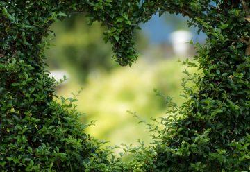 Les trois détails qui rendent votre jardin féérique